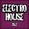Electro House Mix 21.07.2012