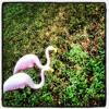 Yoshi Fuerte - Summer Mixtape 2012 (FREE DOWNLOAD)
