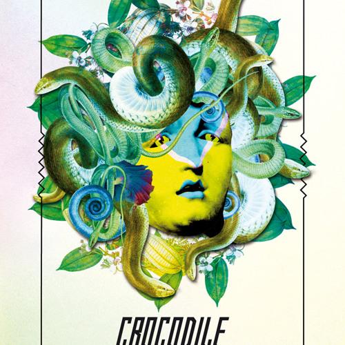 Crocodile#19