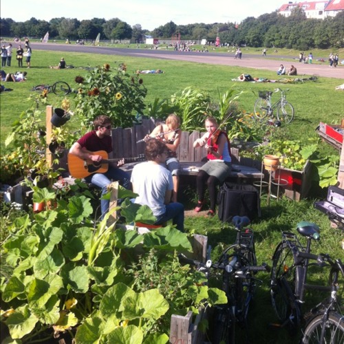 Sounds from the garden at Tempelhofer Park garten