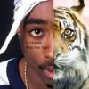 Dj Flowee - 2pac the Tiger (Mashup)