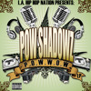 POW Shadowz - Kush Check featuring Rifleman aka Ellay Khule (Project Blowed)