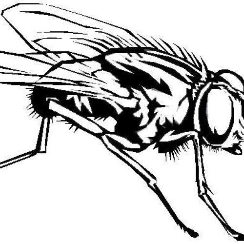 Corbendallas - Le tango des mouches