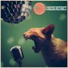 Settle Down (Disco District Radio Edit) - Kimbra