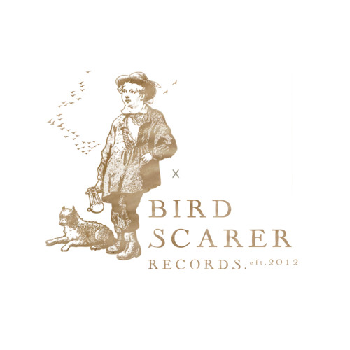 A life of silence (Bird Scarer 002)
