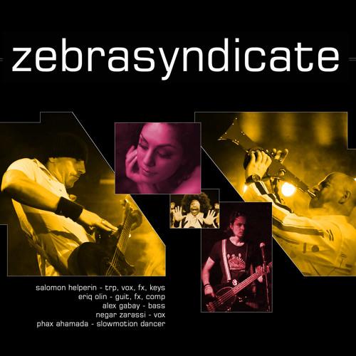ZebraSyndicate - Teasers