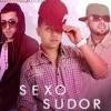 Nejo y Dalmata Ft. J Alvarez - Zion y Lenox- Sexo Sudor y Calor- DJ.VALA