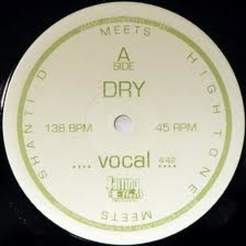 DRY (Shanti D) rmx sample- Dub Invaders ( RoOts'N Future Hi-Fi & Fabasstone)