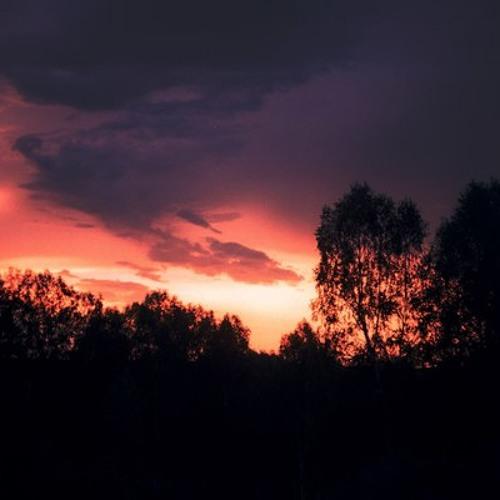 Tima Salomon - Sunset