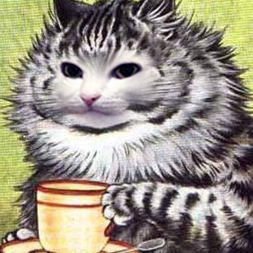 Racetam Cat