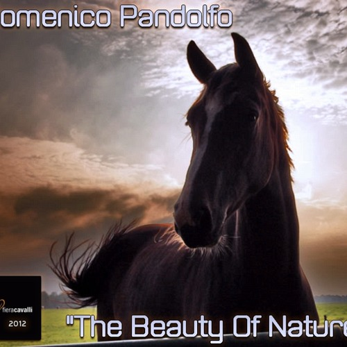 Domenico Pandolfo - The Beauty Of Nature (PREVIEW) [AVAILABLE ON iTUNES]