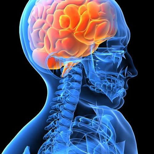 Neurosis (July 2012)