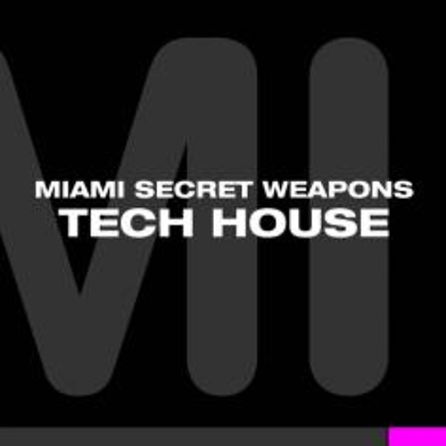 Live Miami Tech House Mix - Mr. Wellman