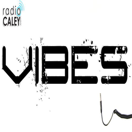 Vibes - The Supreme Experience Jingle