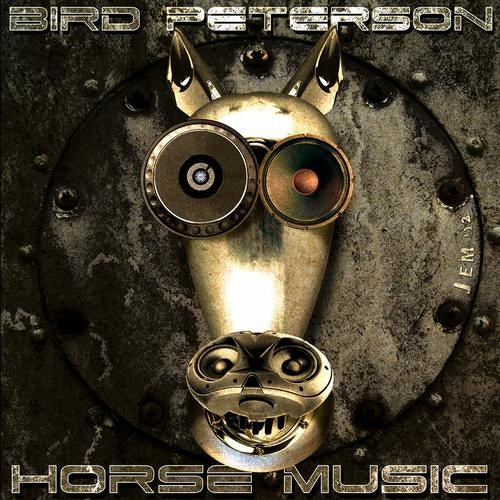 Bird Peterson - Horse Music (OUT NOW ON INSTANT VIBES!!)