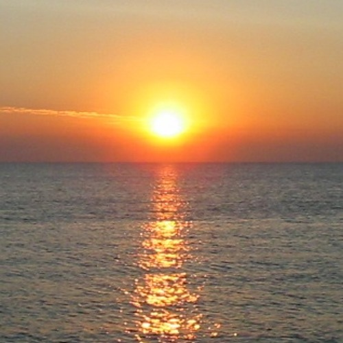 Deerhound - Sea (Low Cover)
