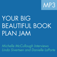 Your Big Beautiful Book Plan: In Conversation with Startup Princess.