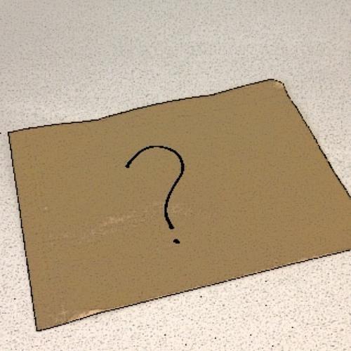A Dubious Brown Paper Bag