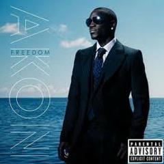 Akon - Troublemaker ( hewz'not P.)