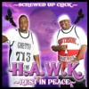 Big Hawk- Hater'z Love Wen Ur Down Zoned Out By Top Shotta Sir Don Wayne