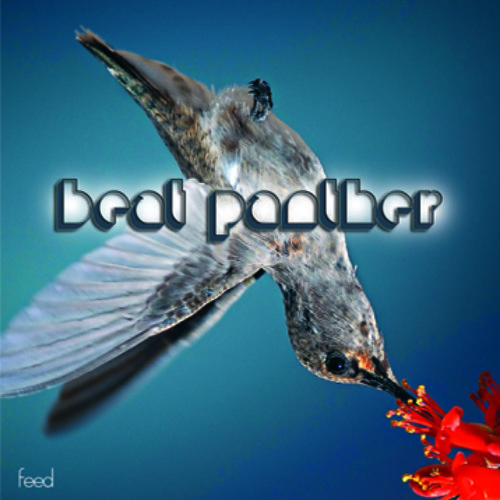 Beat Panther - Feed