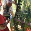 New Nepali Lok Dohori Geet    Bisauni  New Nepali Lok geet 2012 Mayako Naam Japiyo - bisauni.com