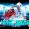 BAILAN ROCHAS Y CHETAS - DJ PITY 012 FEAT NENE MALO •~(Musica Piola & Nueva)~•