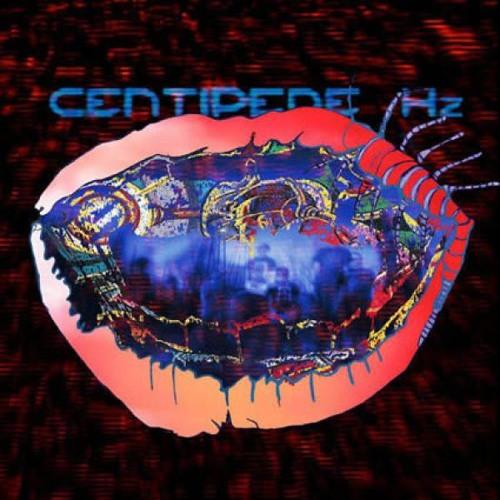 AC_CentipedeHZ