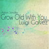 Grow Old With You (Adam Sandler) Cover - Luigi Galvez