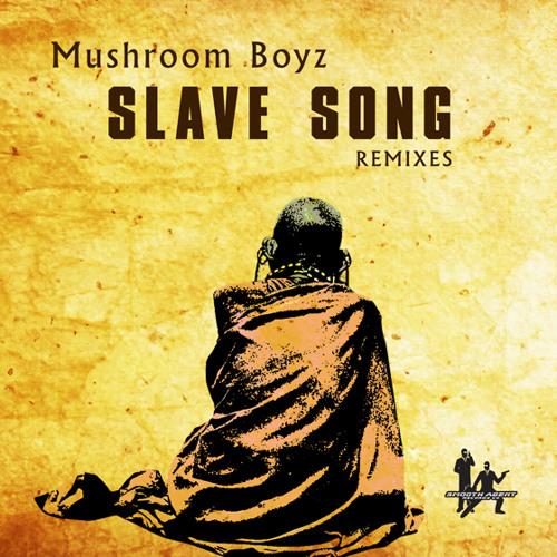 Slave Song (Stephen Rigmaiden MIX)