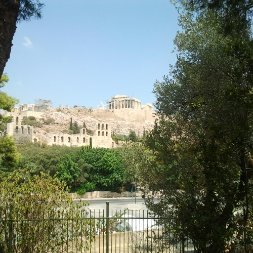 Cicadas Chorus, Gardens Of The Acropolis, Athens, Greece