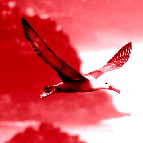 PixelJam86a - Albatross Aligned
