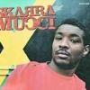 Skarra Mucci feat. Foxy Brown - Money (Pink Rabbits Kill Remix)