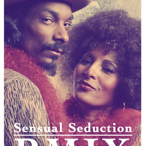 Snoop Dogg - Sensual Seduction BMIX