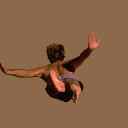 Falling by Diederik de Jonge