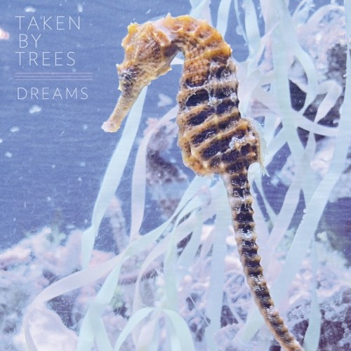 "Taken By Trees - ""Dreams"" (Instrumental)"