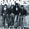 The Ramones - She's a sensation (guitar cover)