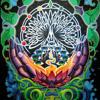 Sound Healing: Joshua Tree Music Festival