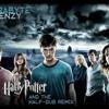 Harry Potter (Dubstep Remix)