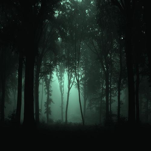 Nocturnas I El Campo