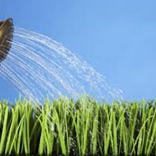 Blog.8.3.2012 - The Garden Hose
