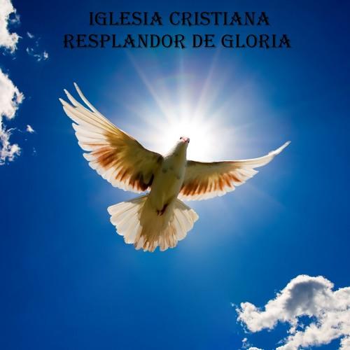 4 - Vino Celestial
