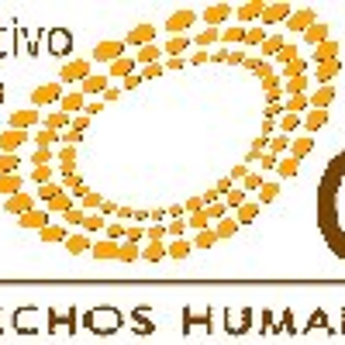 """Campaña Radial """"Hacia Cairo+20"""""""