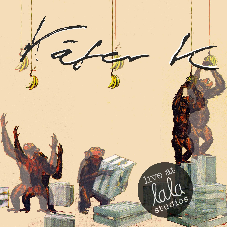 käfer k live at lalal studios