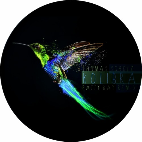 Thomas Scholz - Kolibra [Patty Kay Remix]