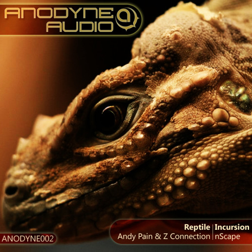 nScape - Incursion - Clip (ANODYNE002) OUT NOW