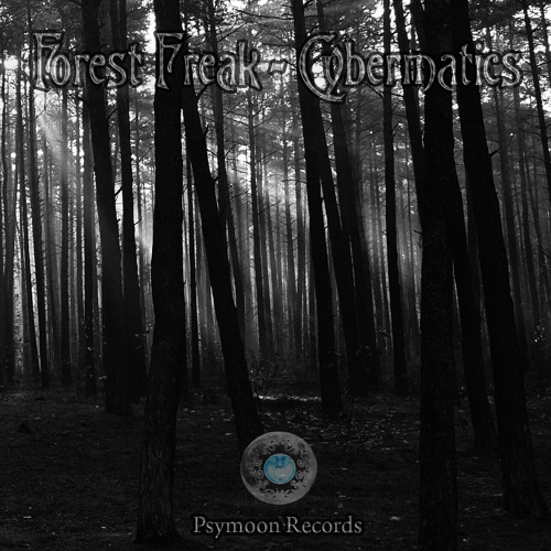 Forest Freak - C11H15NO2 150 BPM ( Released on EP ->Cybermatics<- By PsyMoon Records )