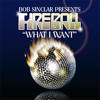 "Bob Sinclair pres. Fireball - ""What I Want (Chris Cox DUB)"""