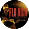 128 WILD  ONES - FLORIDA FT SIA - ( DJ GHOST 2012 )