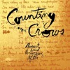 indigo Important Albums: Counting Crows - 'August and Everything After'